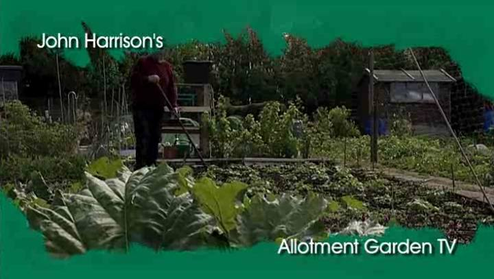 Allotment Garden TV