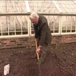Sowing Parsley